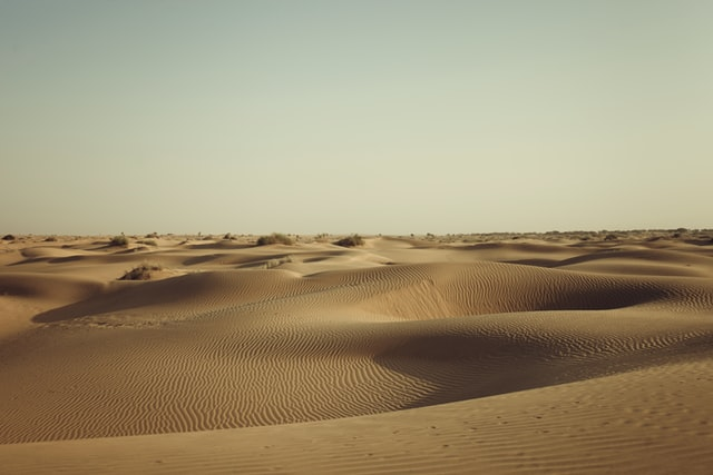 The deserts of Rajasthan